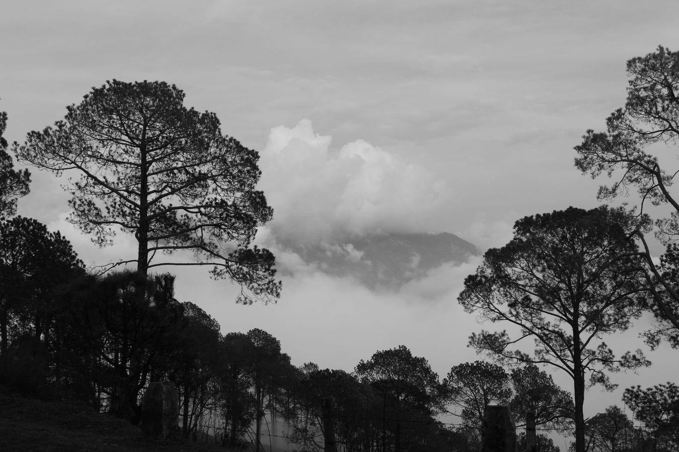 Photo of Lansdowne By Ritesh Rawat