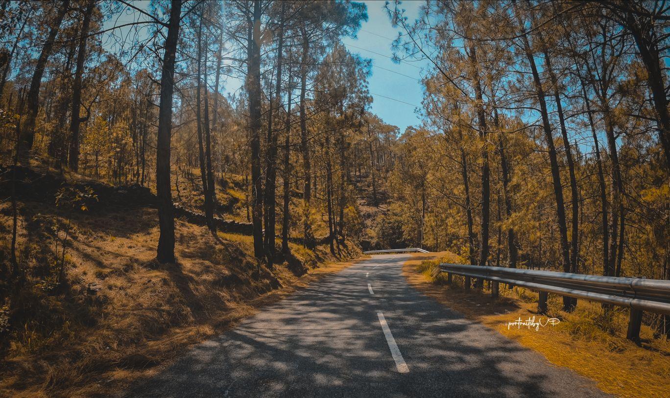 Photo of Mukteshwar By Vishal Papneja