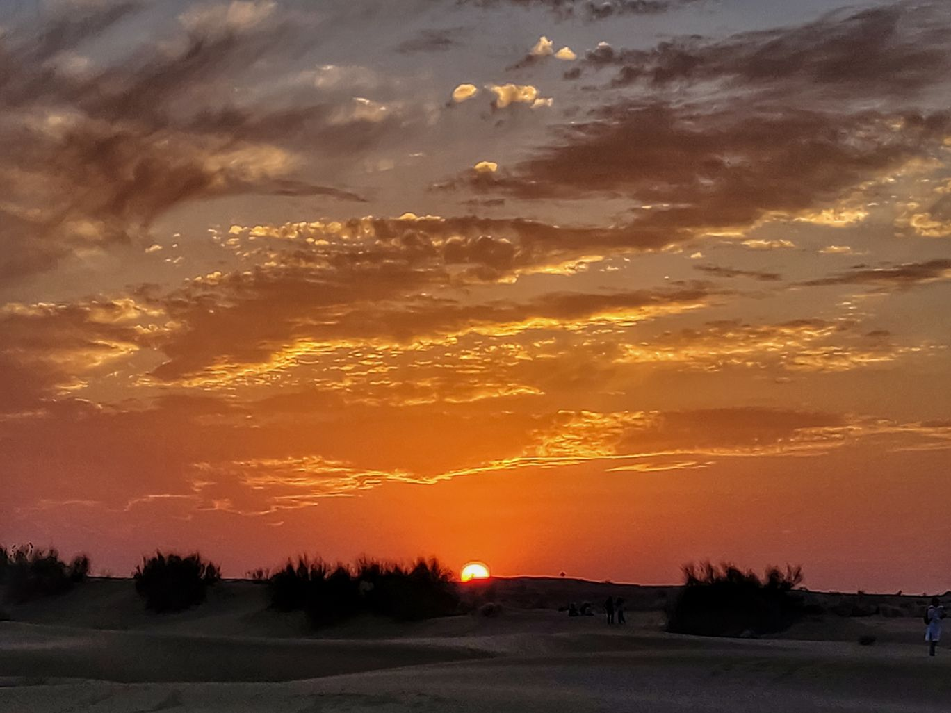 Photo of Thar Desert By Rituraj Anand