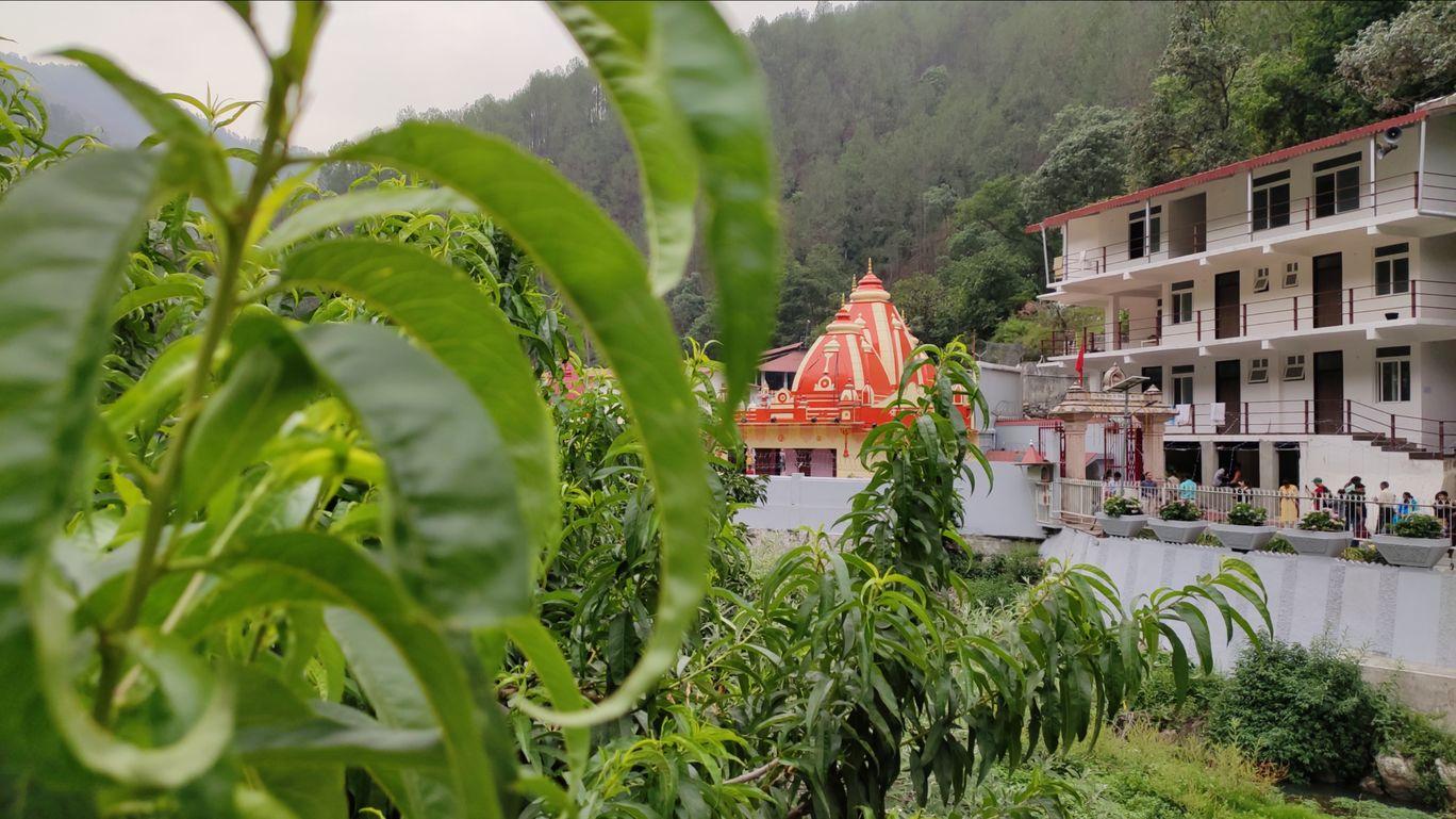Photo of Kainchi Dham By Dheeraj Maheshwari