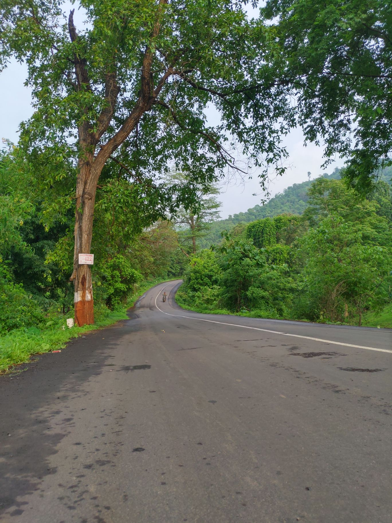 Photo of Wilson Hills By Ashutosh Sheth