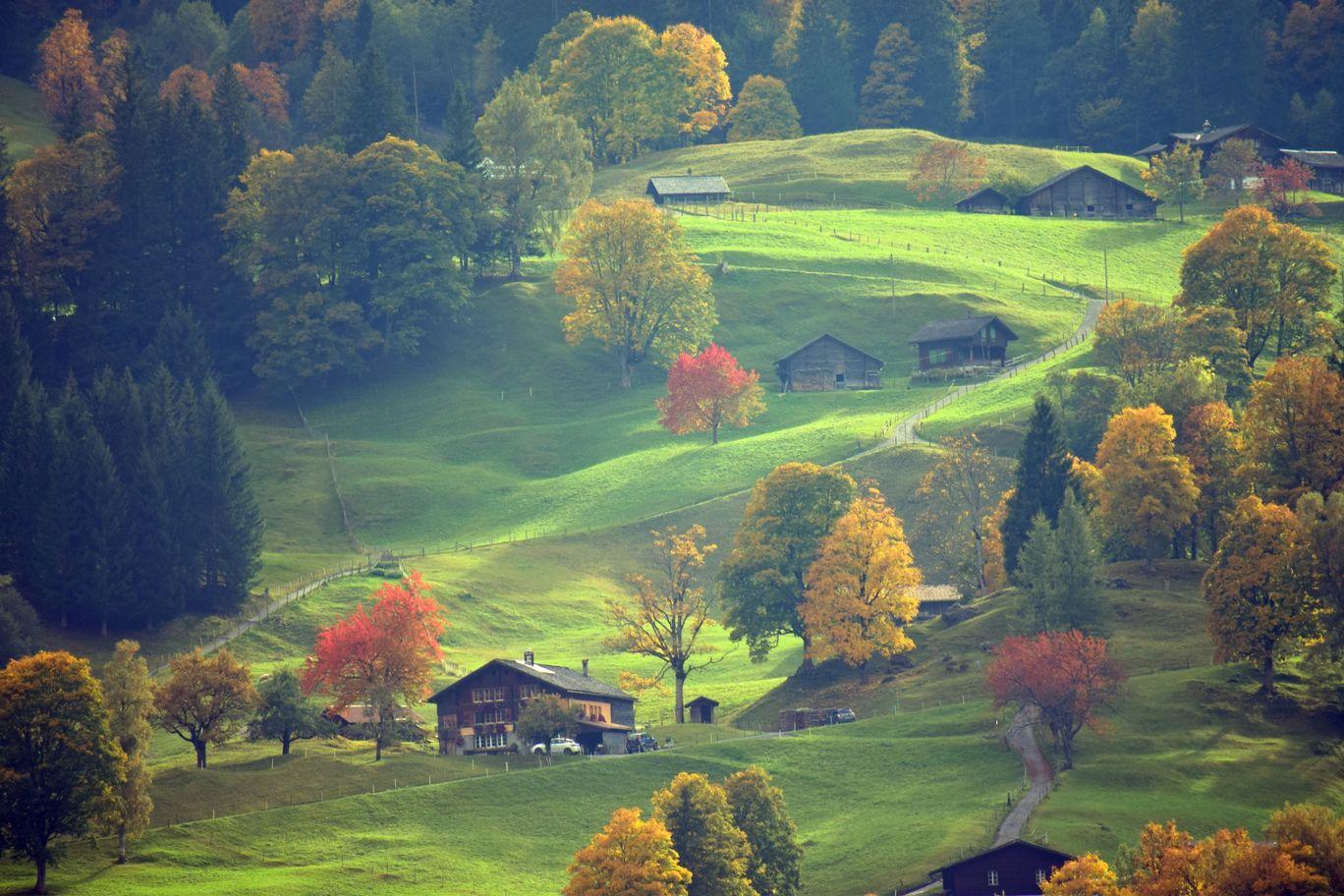 Photo of Switzerland By bony sunny