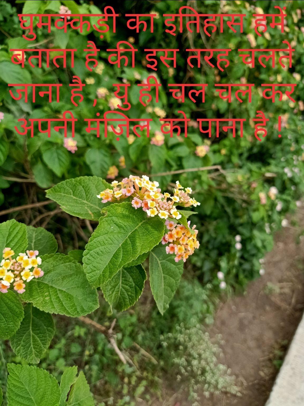 Photo of Ujjain By Praveen Gupta (pk)
