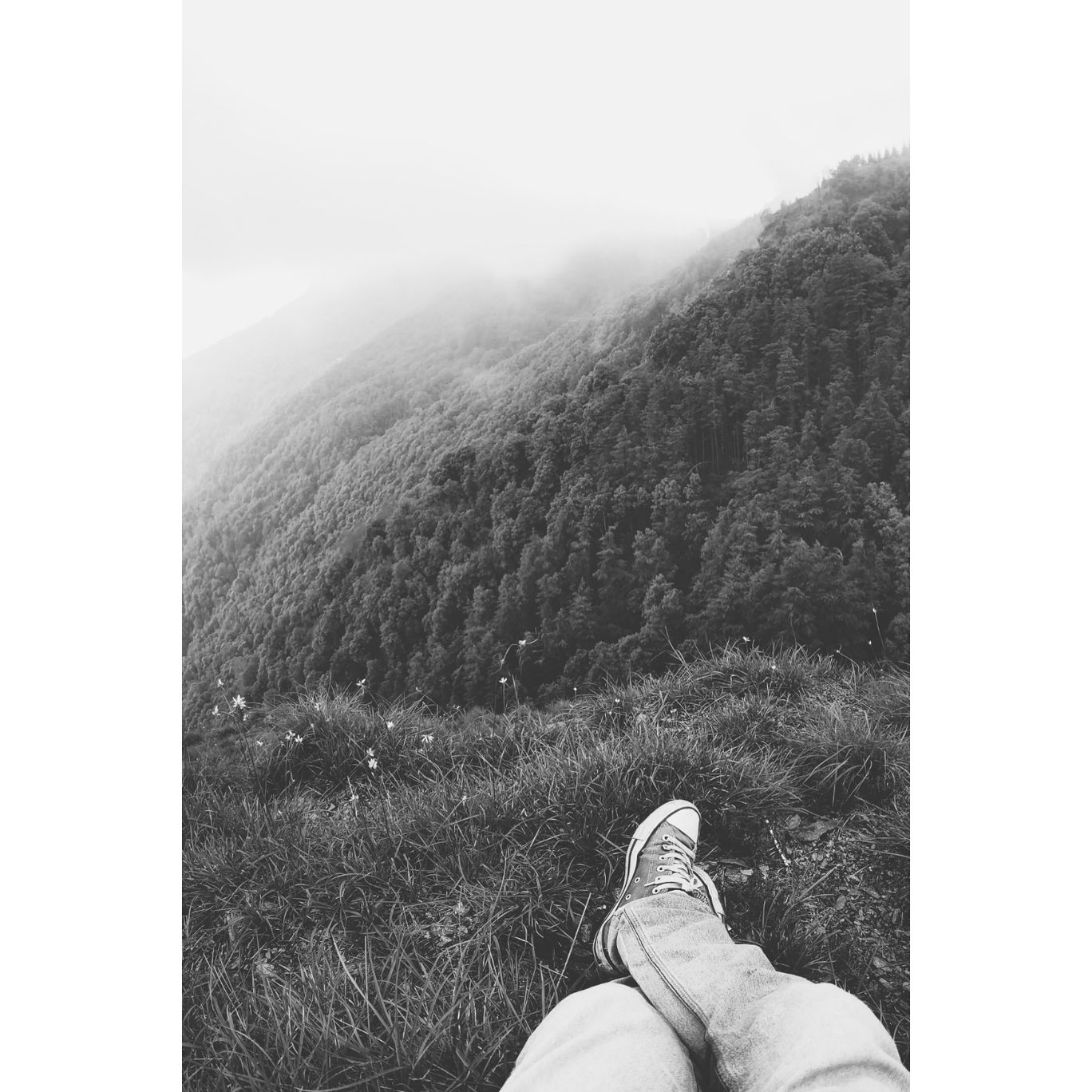 Photo of Shimla By Aman Chauhan