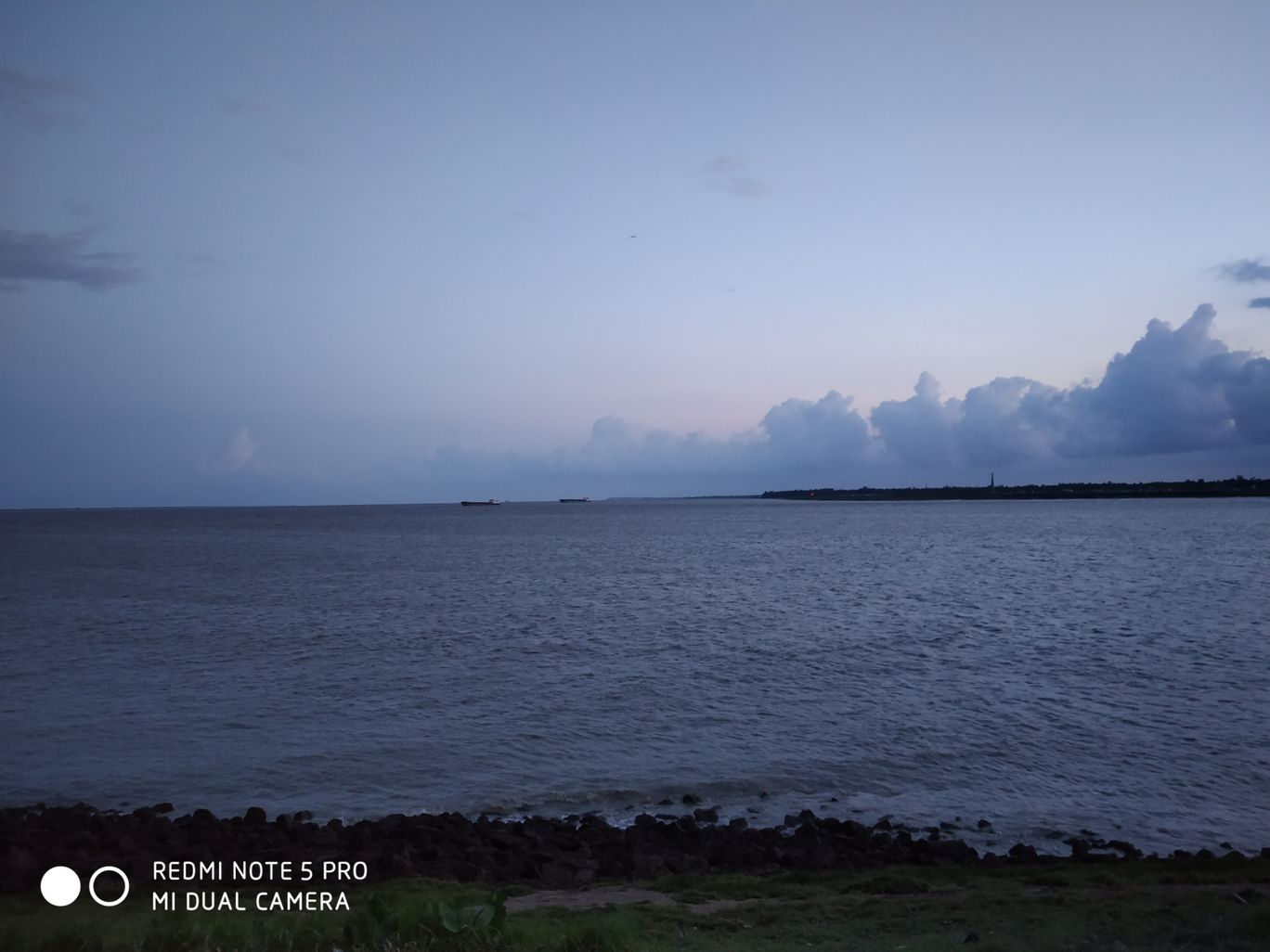 Photo of Haldia By the dreamer....the believer