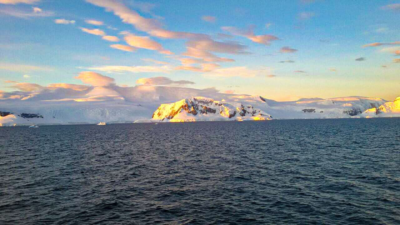 Photo of Antarctica Peninsula Penguin Colony By herlipstick.hiscamera
