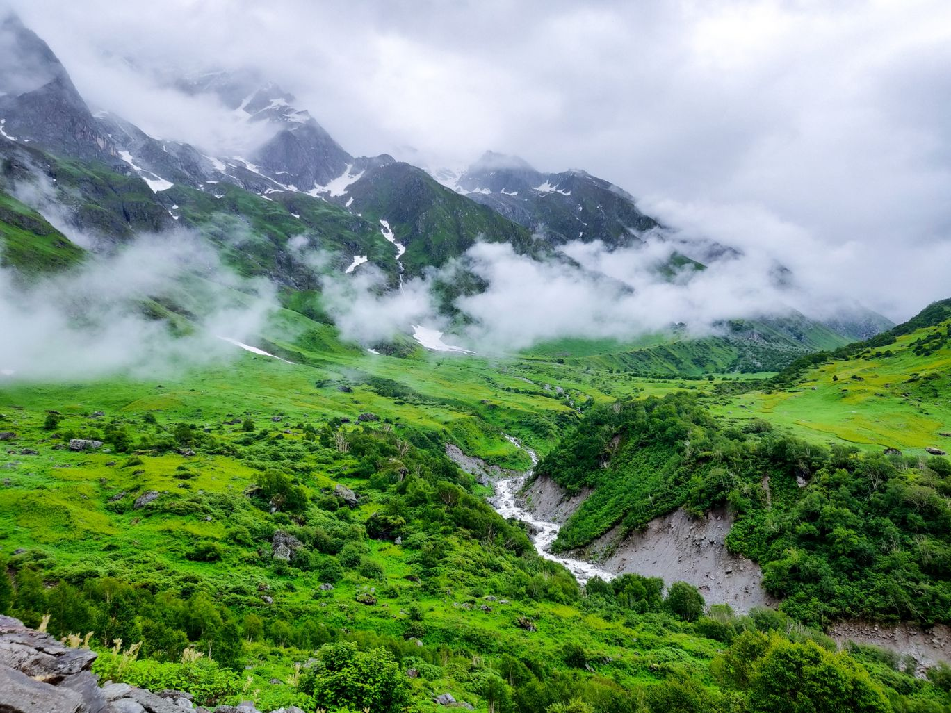 Photo of Valley of Flowers National Park By Kundan Bohra