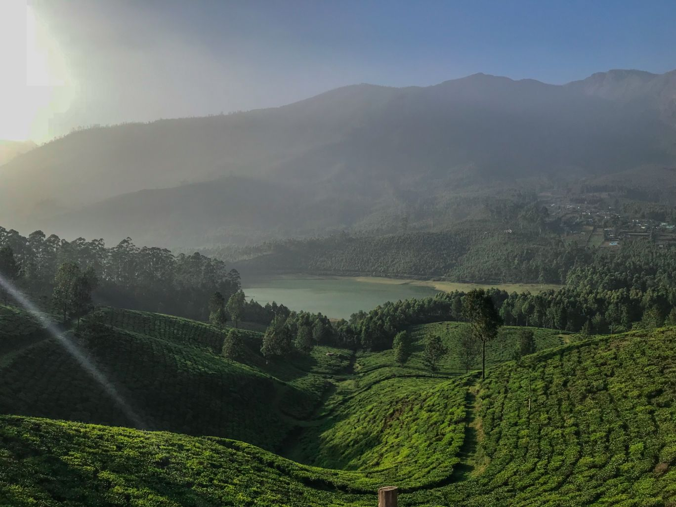 Photo of Munnar By Mohit Reddy