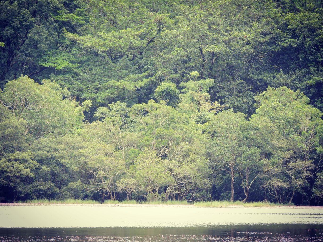 Photo of Pookode Lake By Aromal