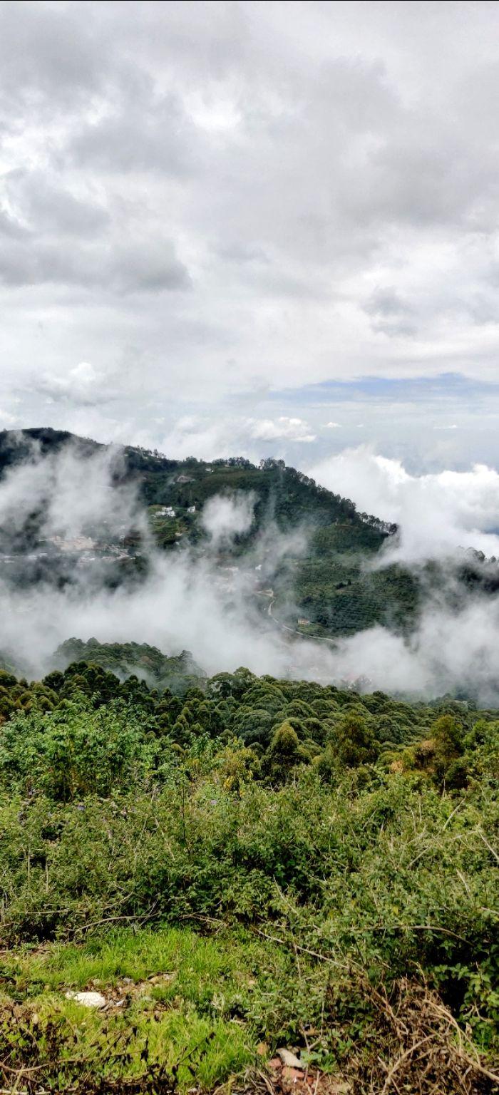 Photo of Kodaikanal By jees jose