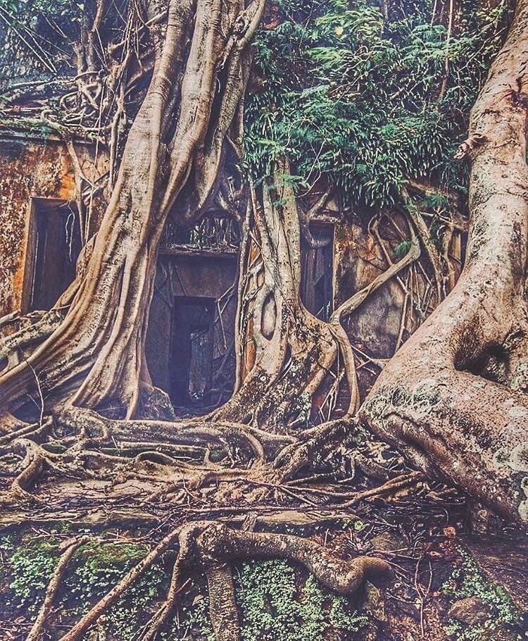 Photo of Andaman and Nicobar Islands By shubham nair