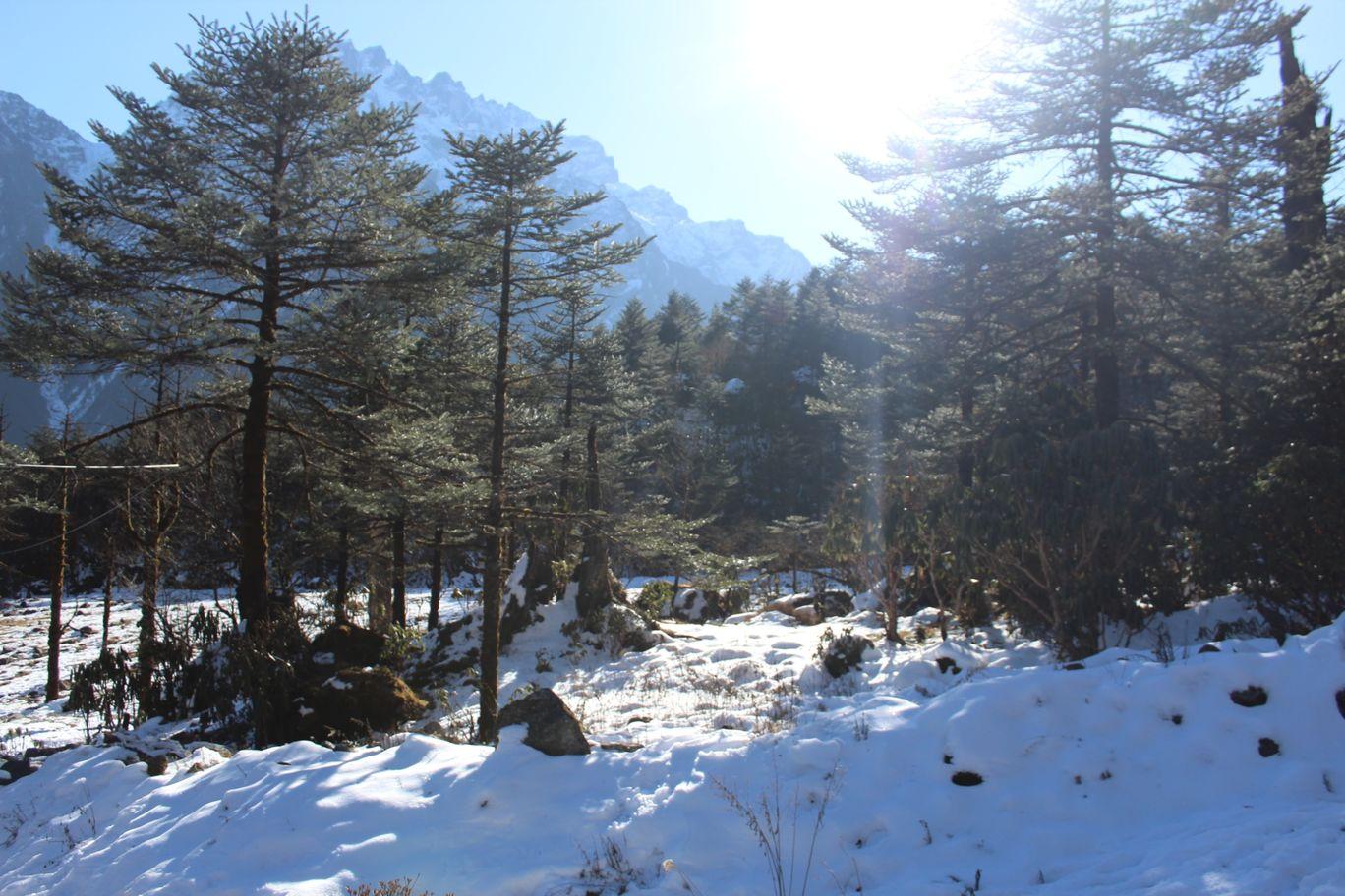 Photo of North Sikkim By Sandip Tikader