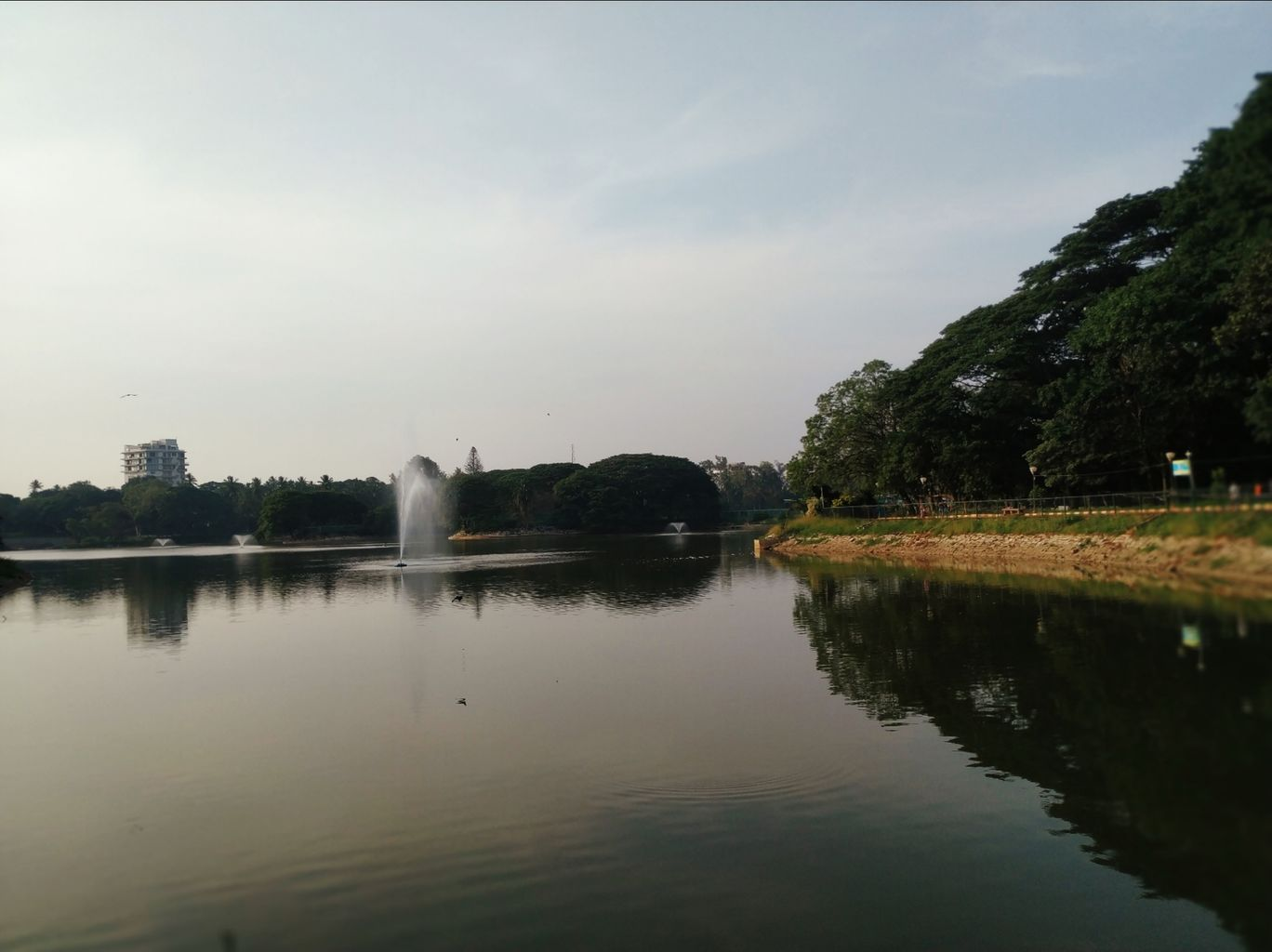 Photo of Lal Bagh By Brunda Rao Nagraj