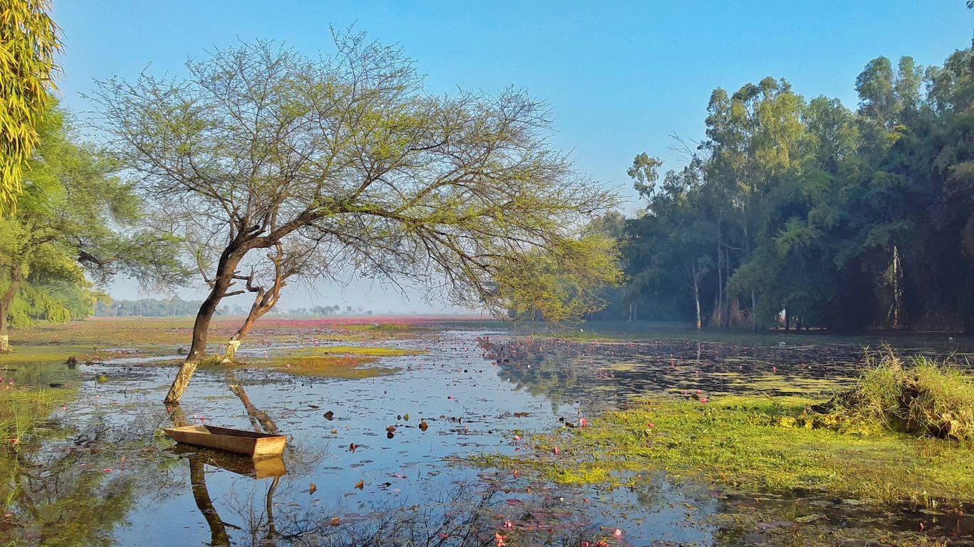 Photo of Gulawat Lotus Valley By Dev Haldar