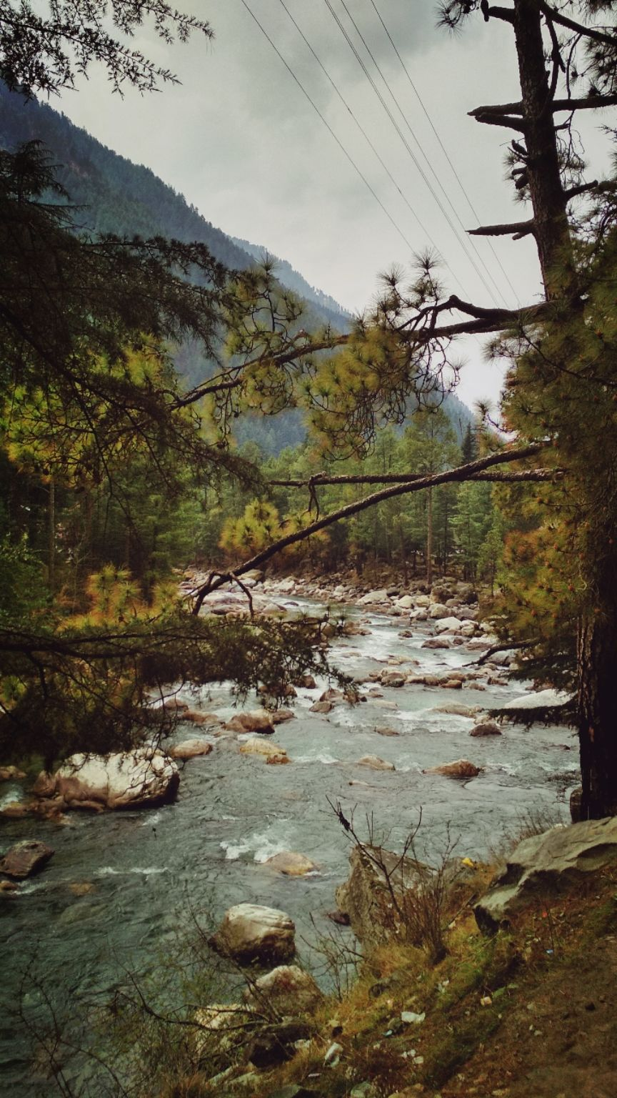 Photo of Kasol By Ravi Singh