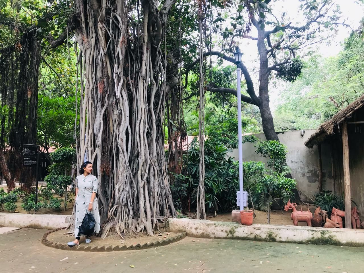 Photo of Craft Museum Parking By Shivangi Garg