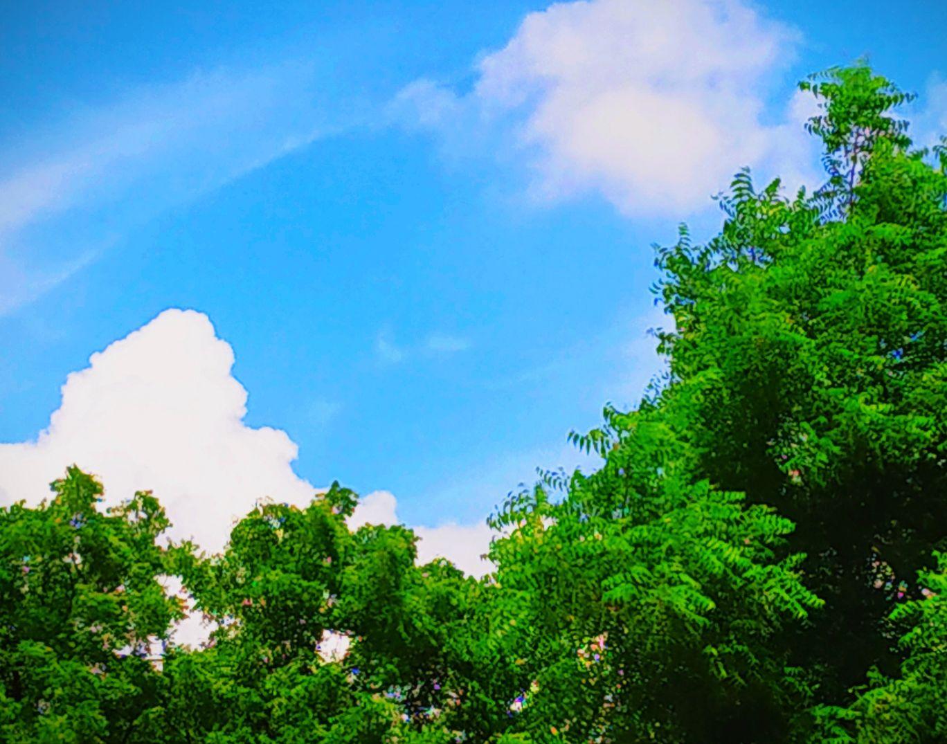 Photo of NH27 By अजीत सिंह