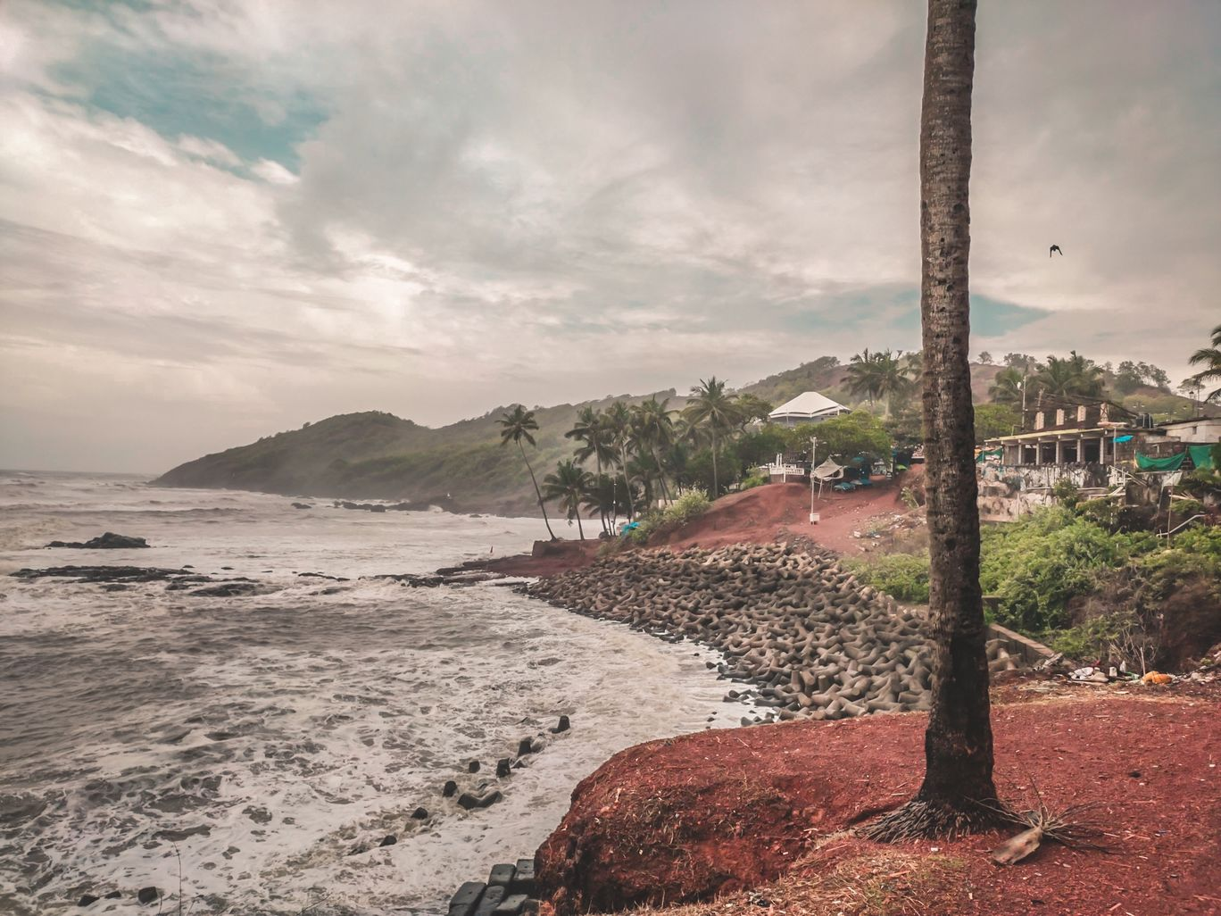 Photo of Goa By JOY BISWAL