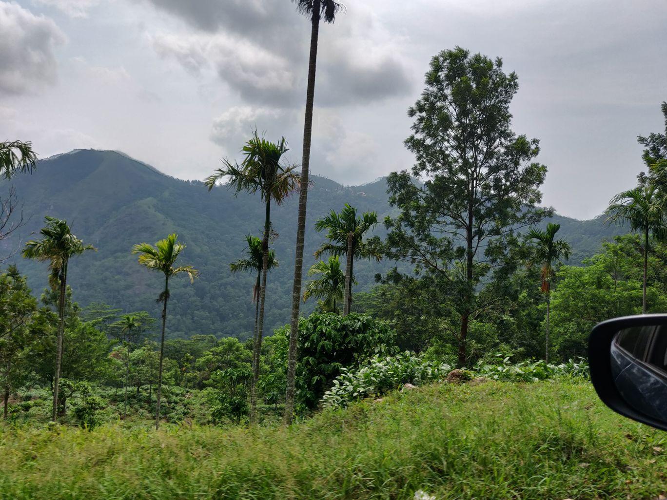 Photo of Ponmudi By Sowrav Sasikumar
