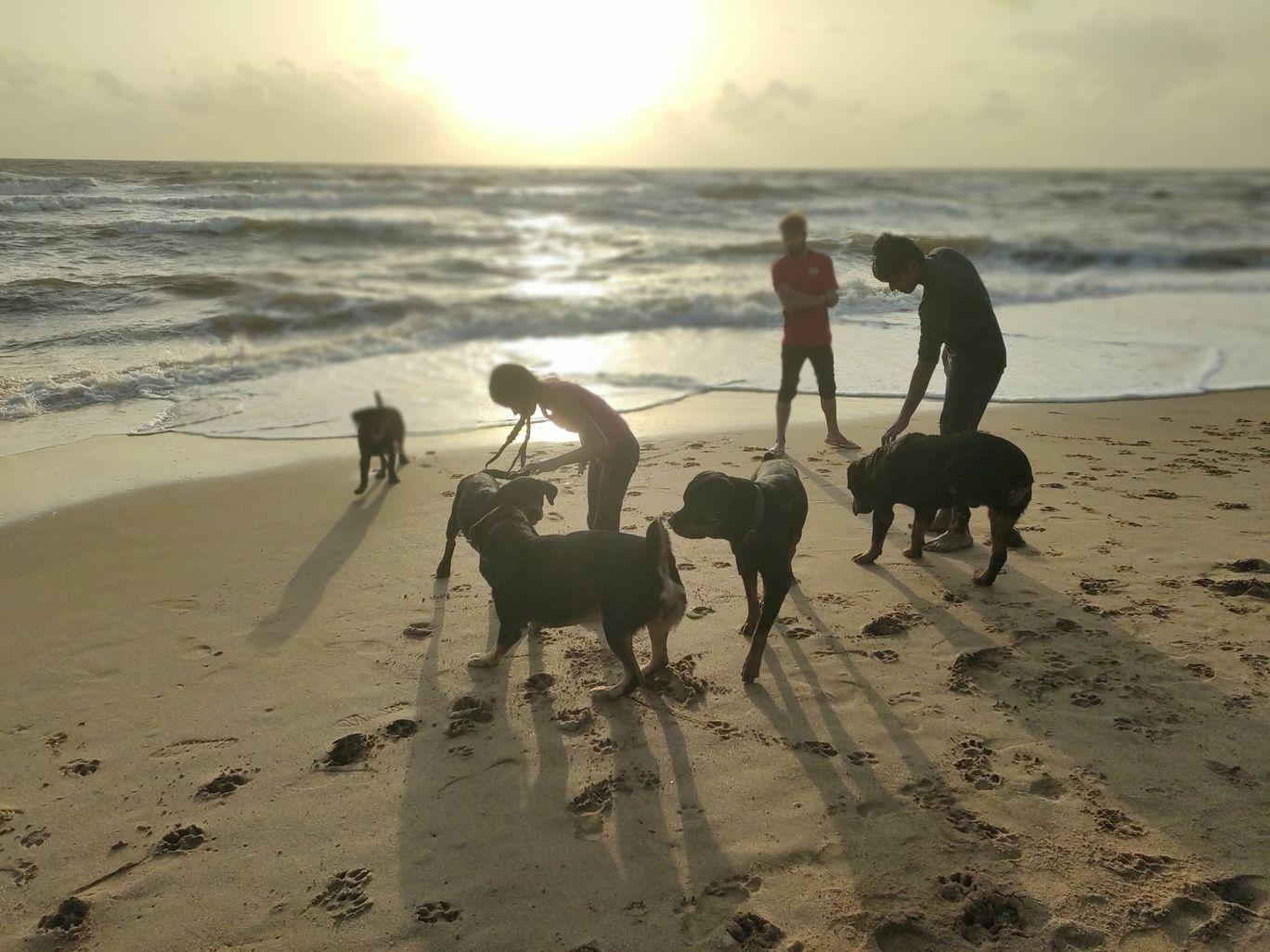 Photo of Anjuna Beach By SREEKANTH