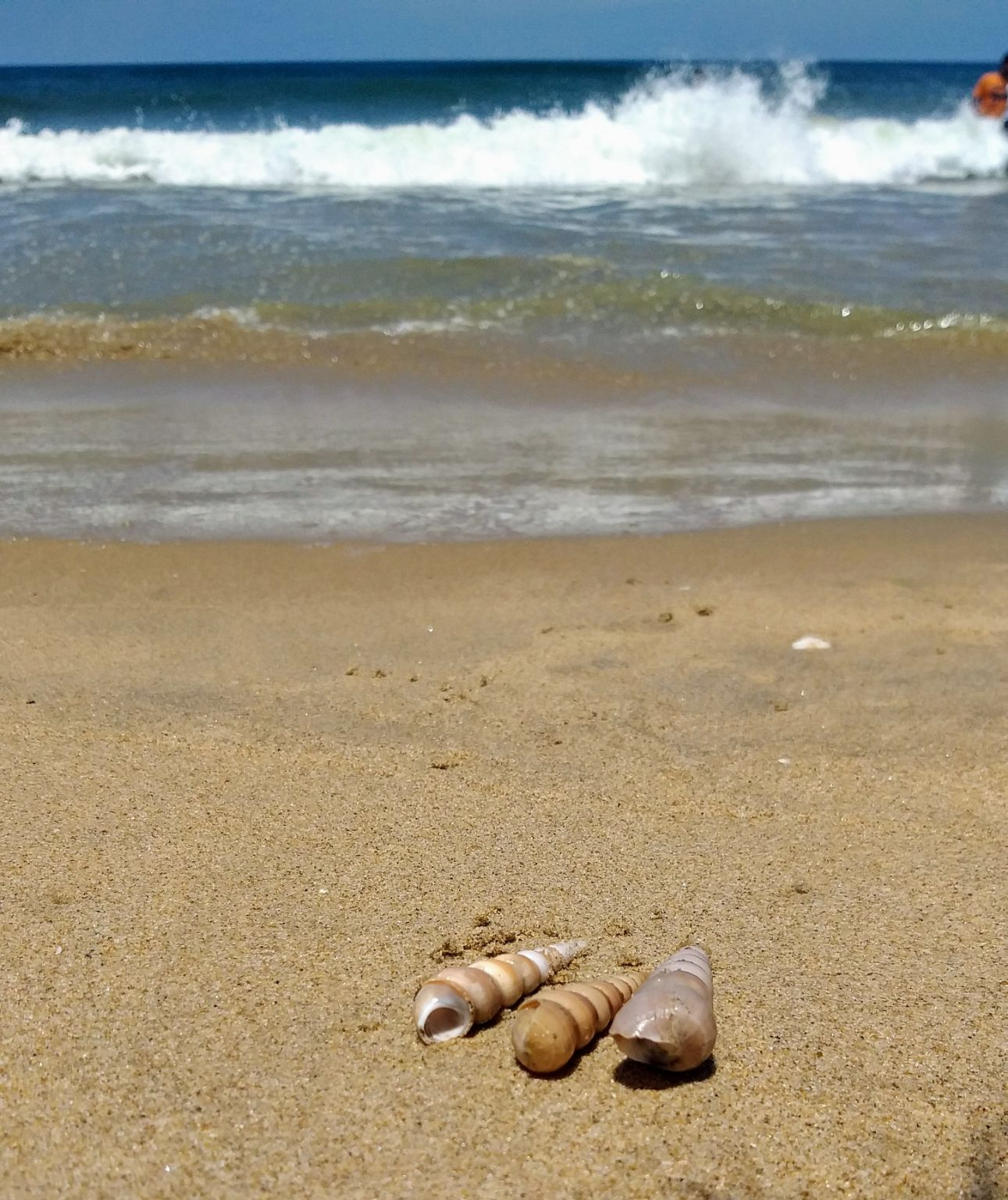Photo of Paradise Beach By Radha Bhoyar