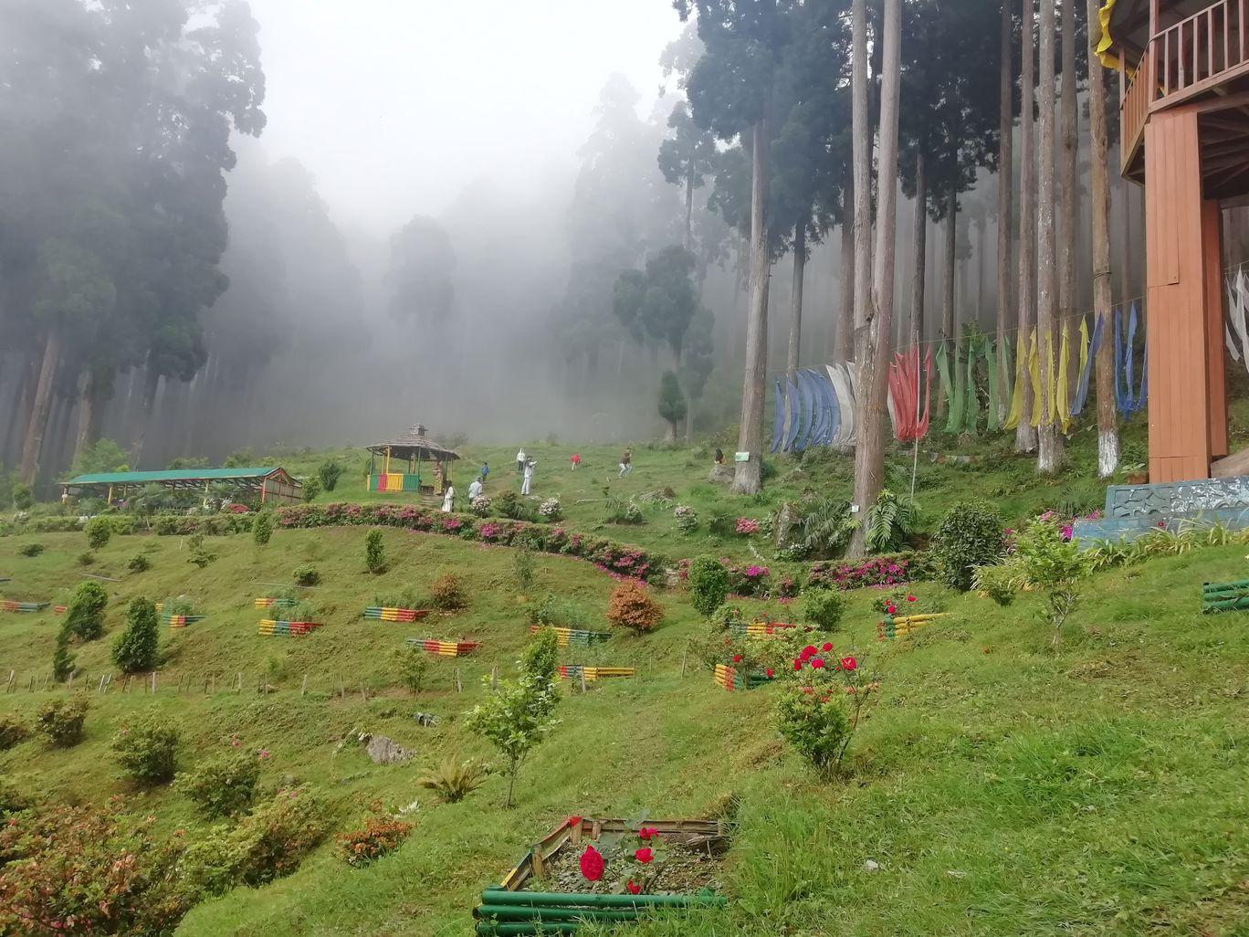 Photo of Lamahatta Park By Gypsy
