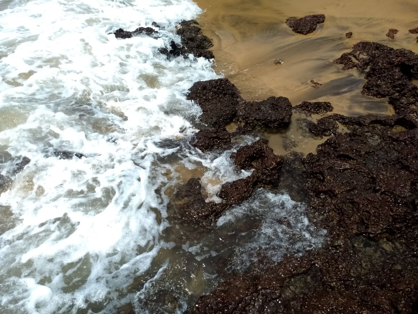 Photo of Calangute Beach By Arpit Jakhar