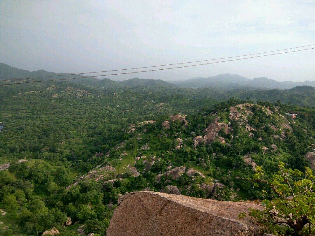 Photo of polo forest himmatnagar By Ayushy Chauhan