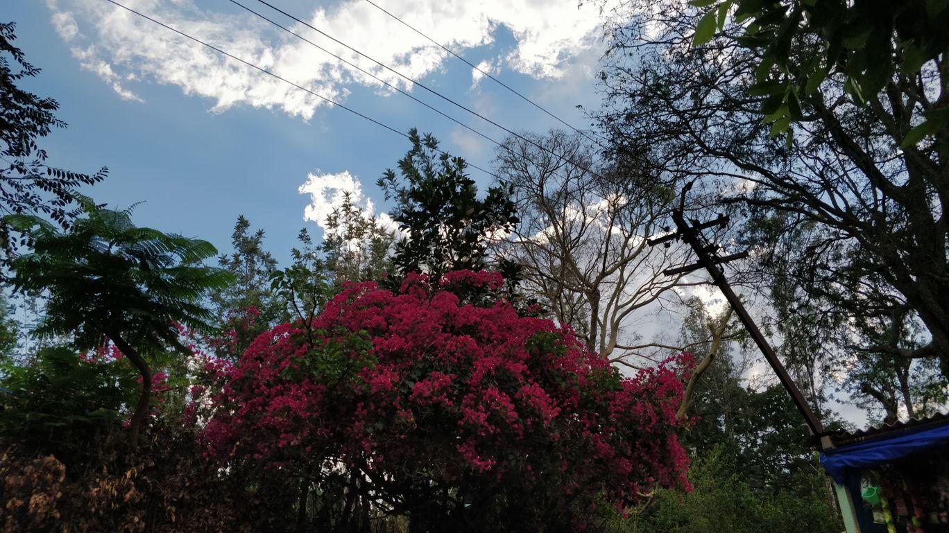 Photo of Kolli Hills By Praveen Kumar