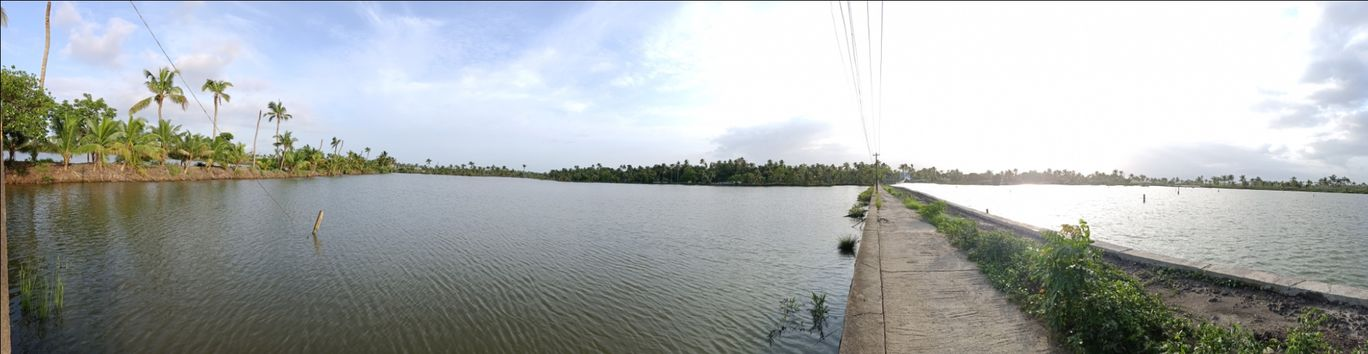 Photo of Kadamakkudy Islands View Point By Das Holidays