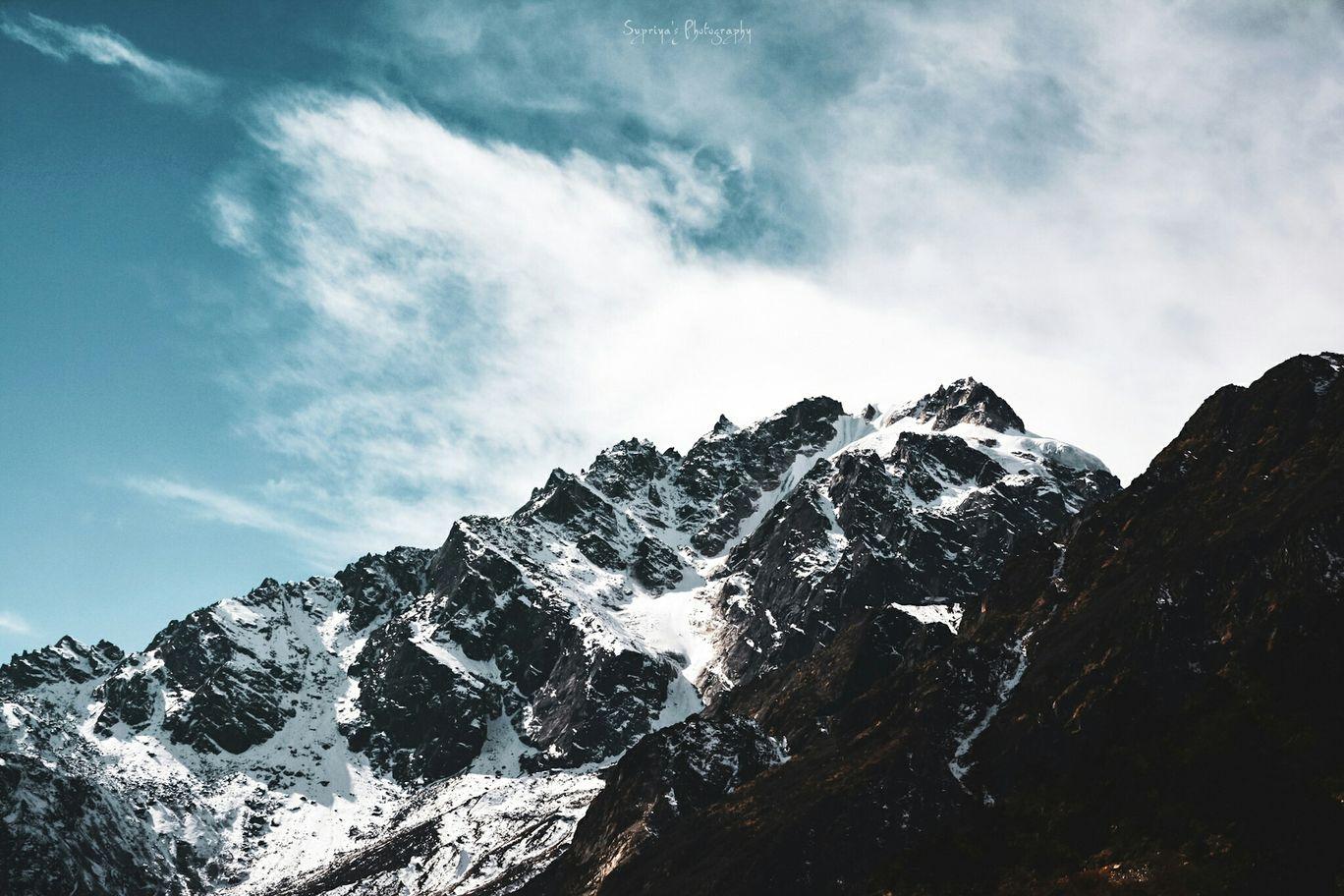 Photo of Zero Point Yumthang Valley By Supriya Samanta