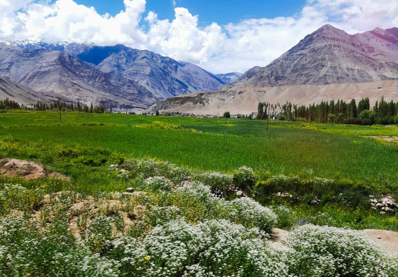 Photo of Ladakh By Jashita Ray