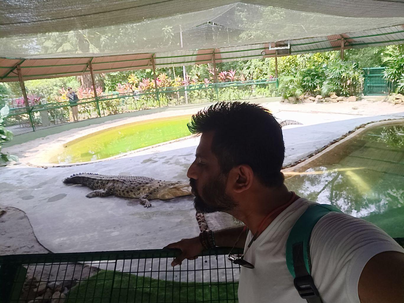 Photo of Crocodile Adventureland Langkawi By Chetan Shetty