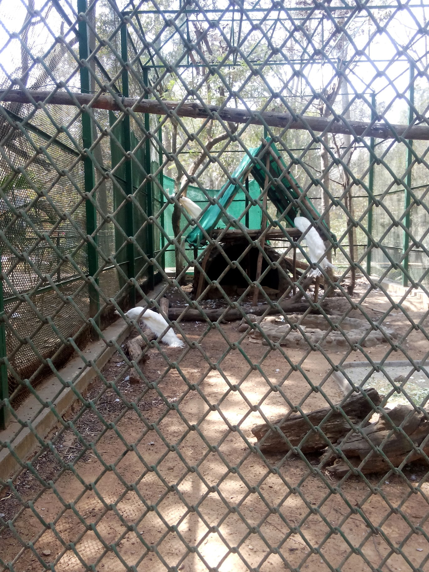 Photo of Bannerghatta Biological Park By So An
