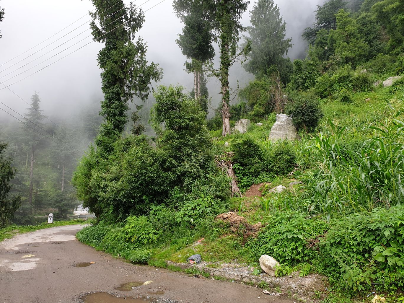 Photo of Dalhousie By dhruv