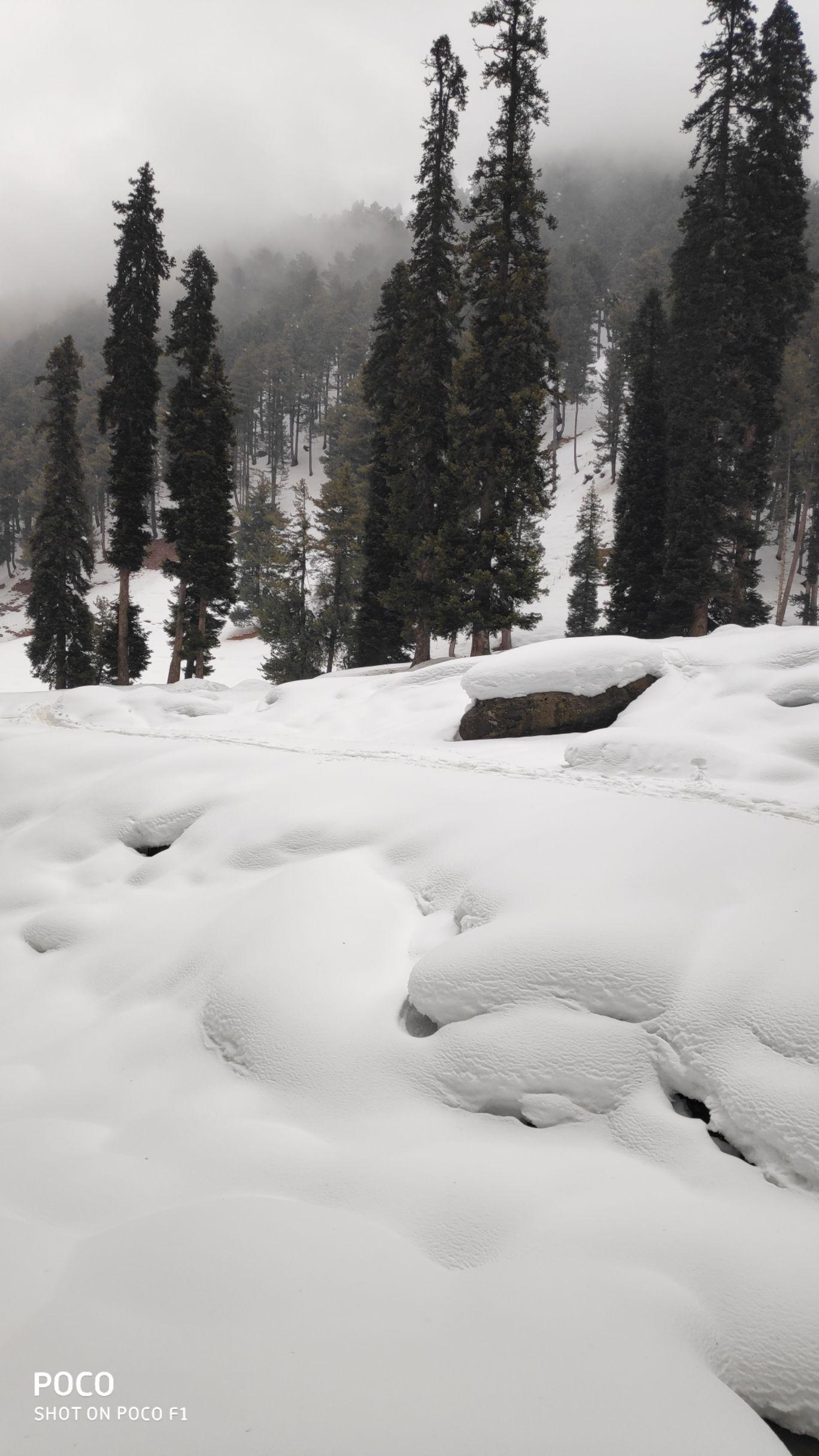 Photo of Kashmir By Shivangi Mistry