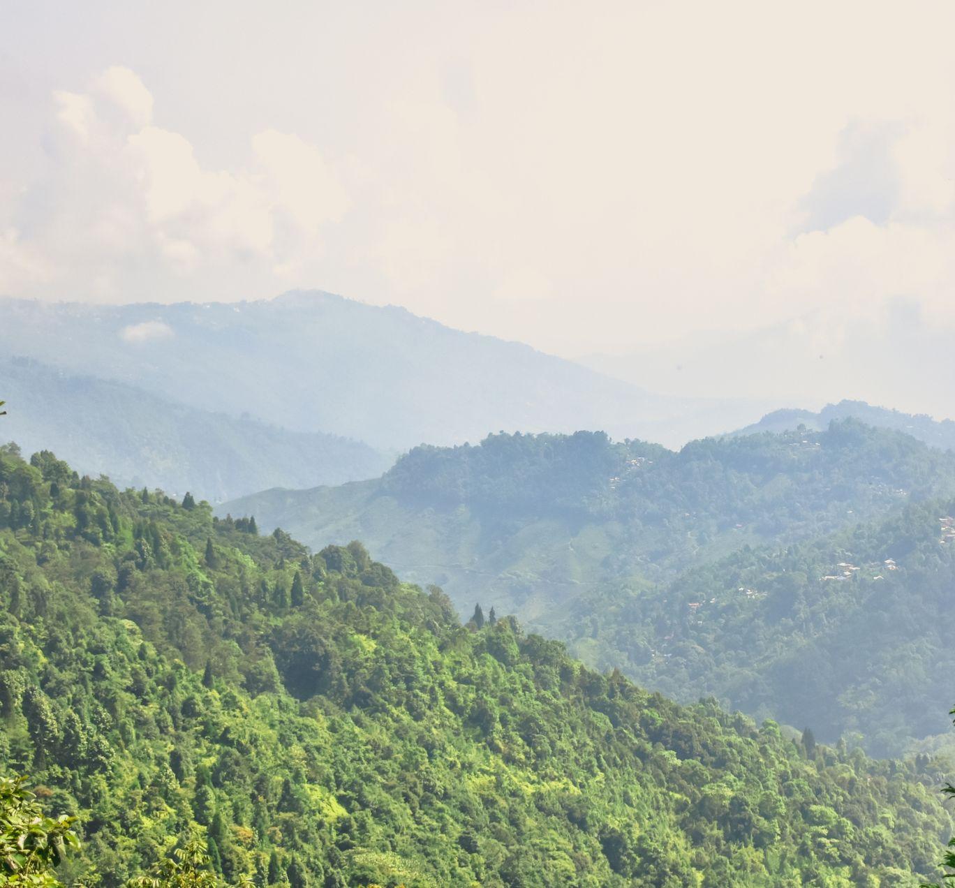 Photo of Darjeeling By Sounak Ghosh
