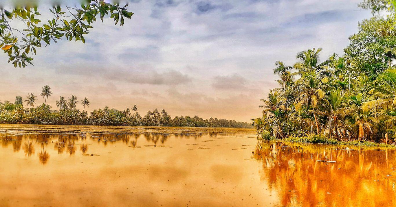 Photo of Kerala By travel paranoid