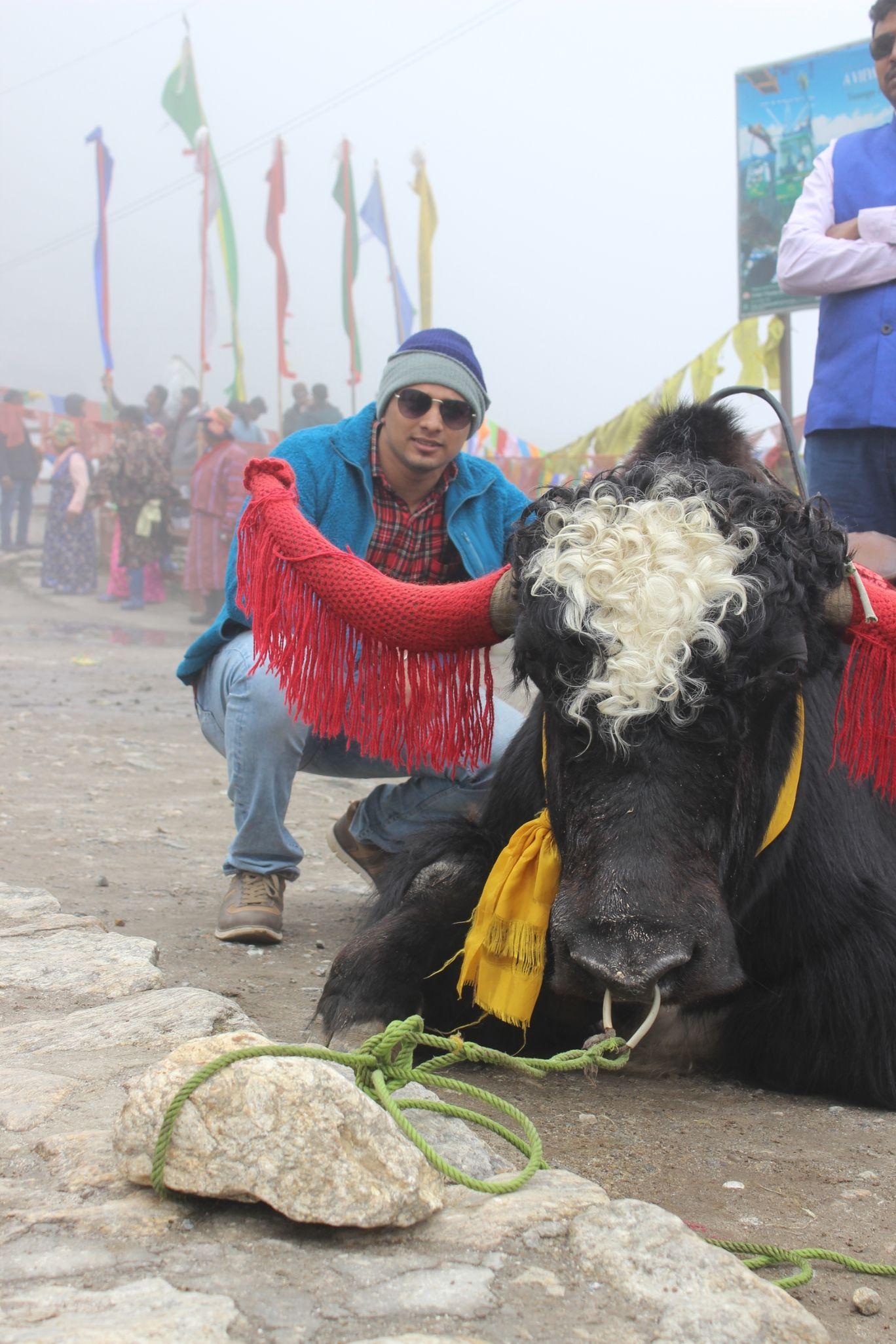 Photo of Gangtok By Pradeep Arunagiri