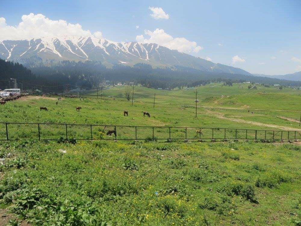 Photo of Jammu and Kashmir By Mahesh Sharma