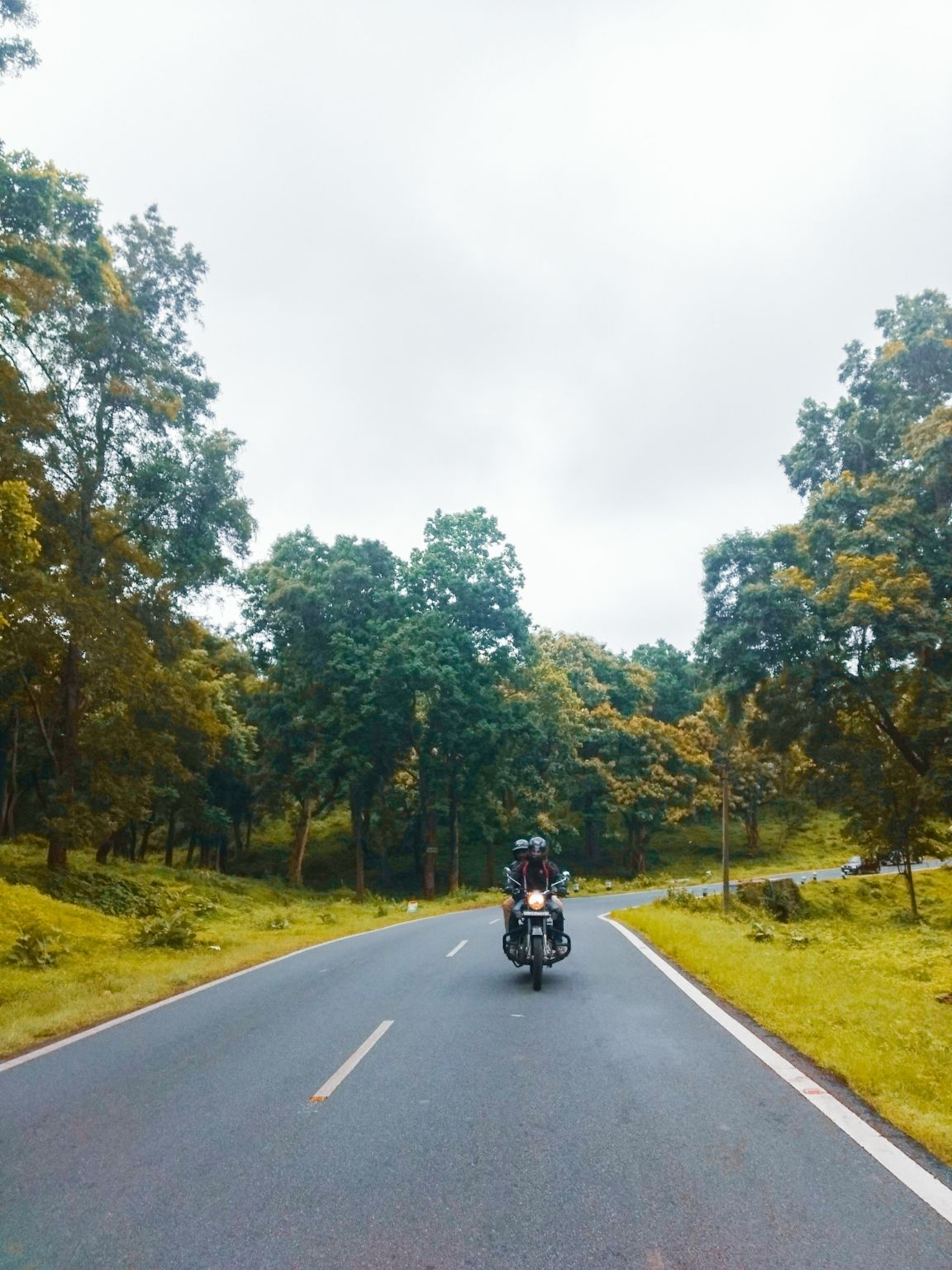 Photo of Bandipur National Park By Mohammed Fasal