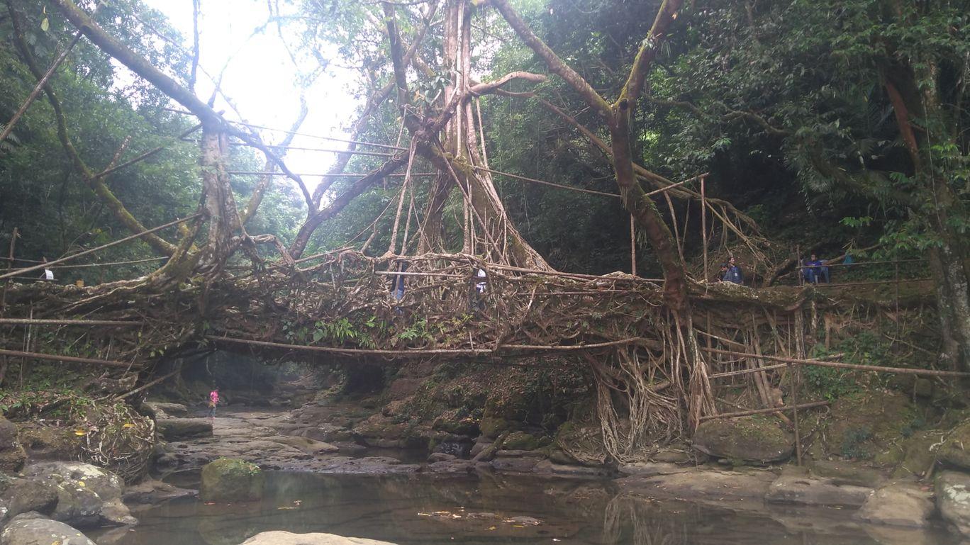 Photo of Meghalaya By rupesh kumar