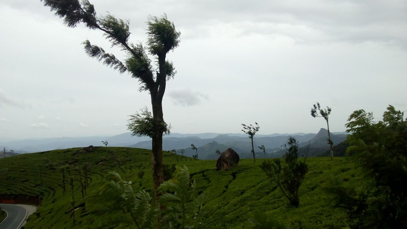 Photo of Munnar By jay