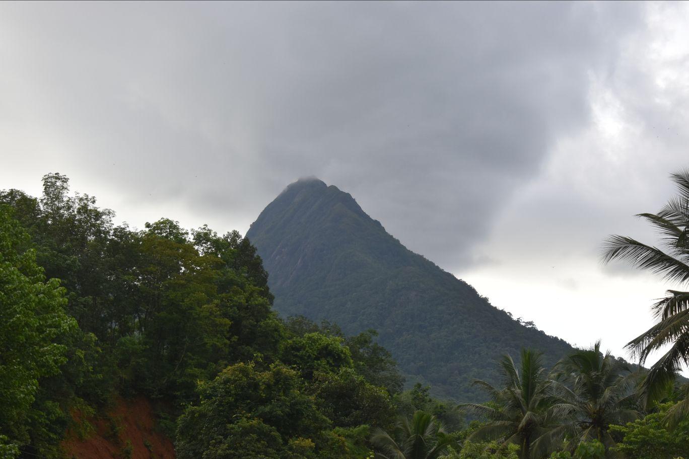 Photo of Ponmudi Hill Station By Tinju Francis John