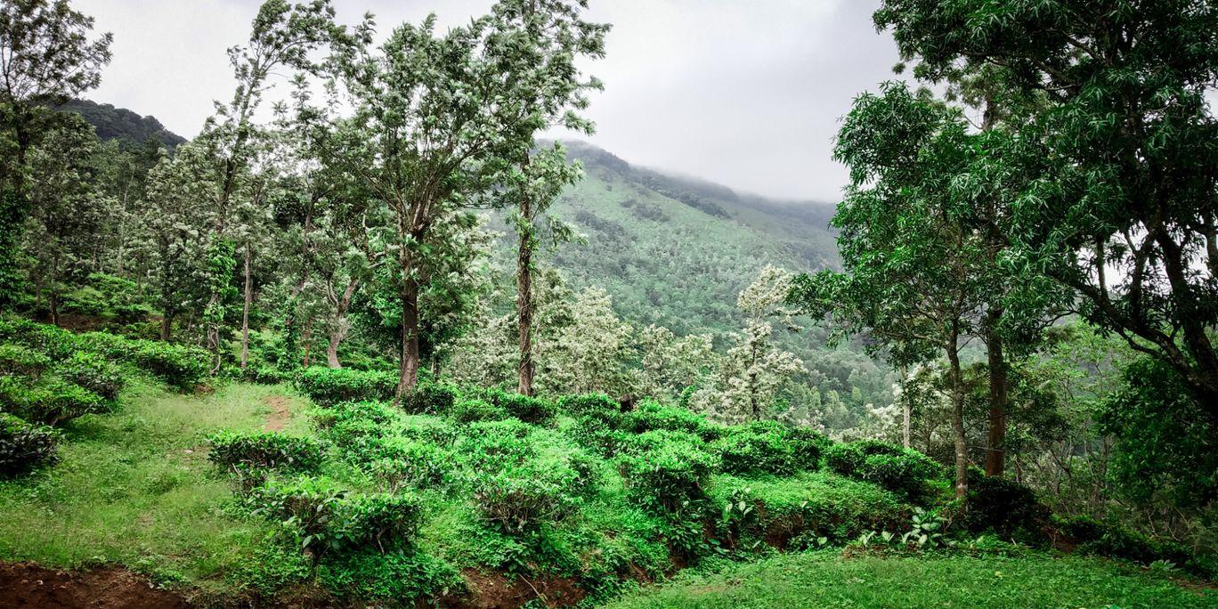 Photo of Ponmudi By Gopu Krishnan