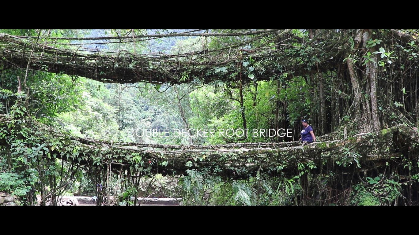 Photo of Double Decker Living Root Bridge By Shubhi Gupta