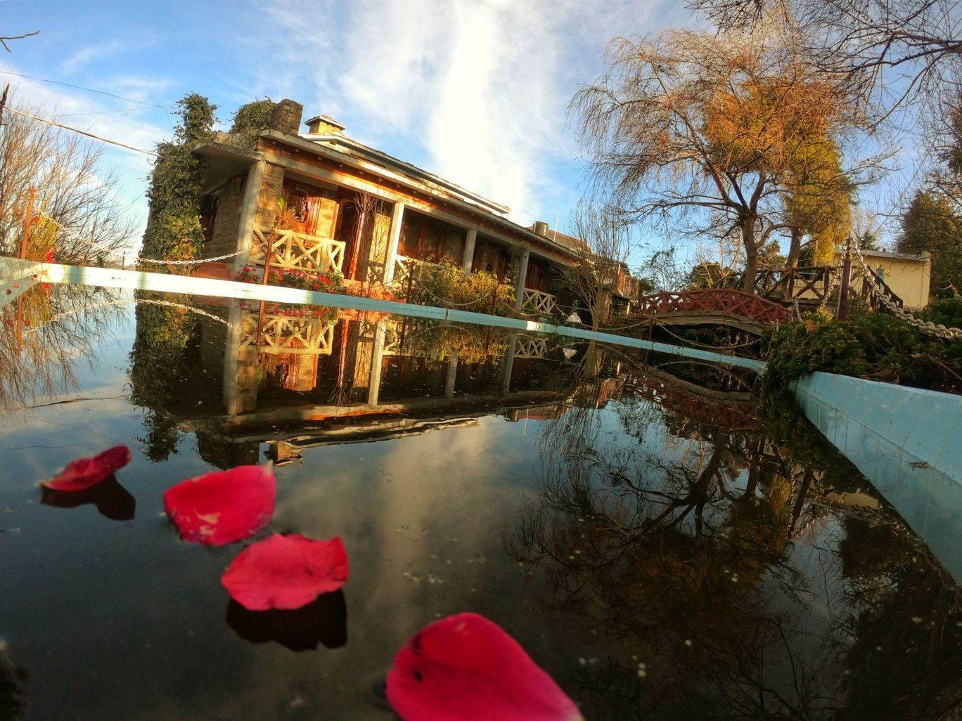 Photo of Trishul Orchard Resort By kavin kutiyal