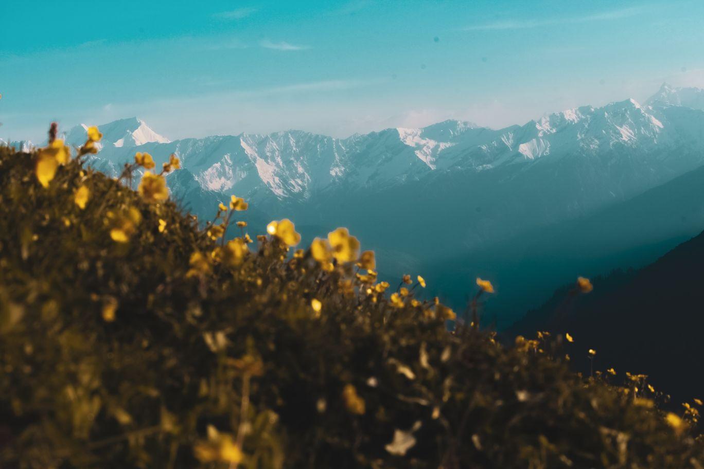 Photo of Chanderkhani Pass By Sourav Mahant