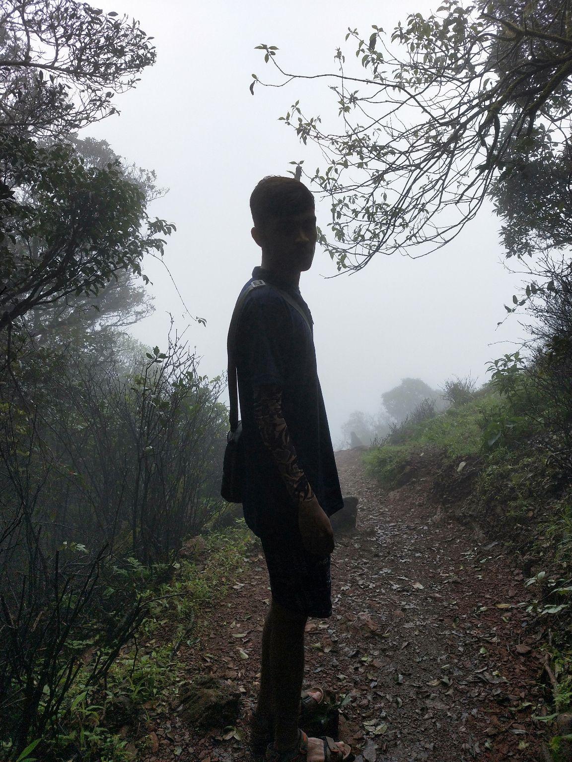 Photo of Kodachadri Hill By Shyam