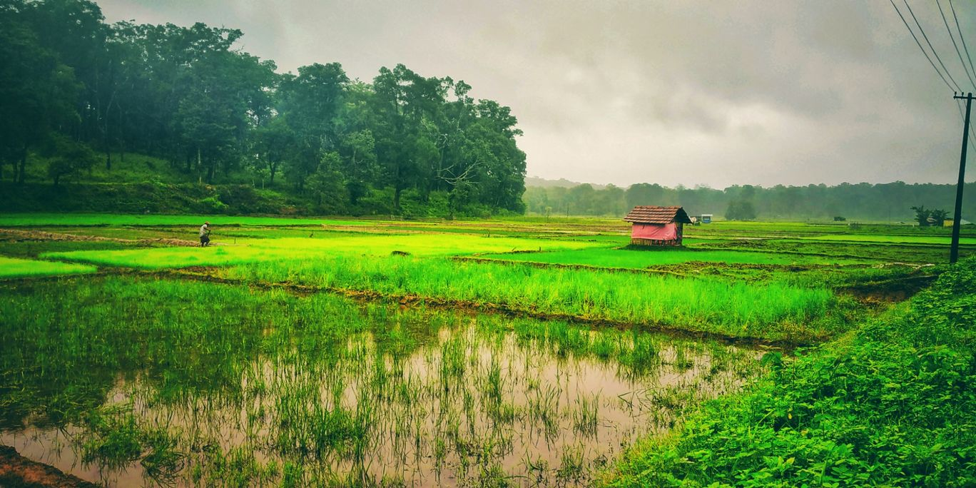Photo of Wayanad By Prakash v s